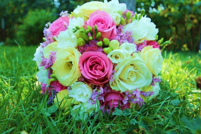 kremowe i różowe róże